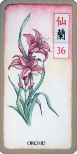 Mahjongg Card Summer Orchid