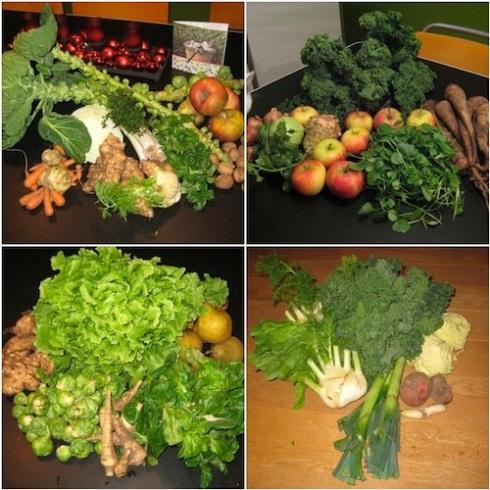 organic CSA vegetable loot weeks 48 to 5, 2011