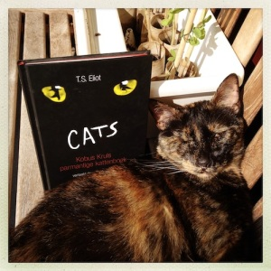 Kuki posing for TS Eliot's Cats